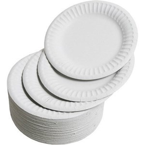 6-inch Disposable Paper Plates (pack of 100)